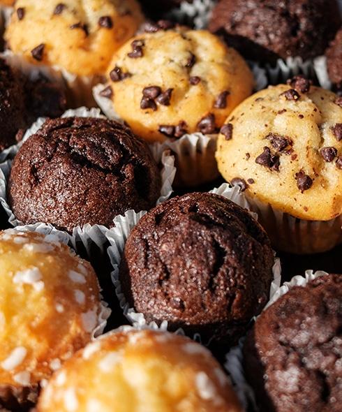 Muffins au chocolat, pépites de chocolat, nature